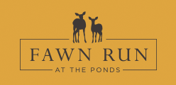 Fawn Run At The Ponds